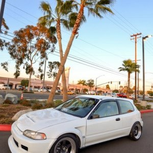 Dobler EG in n out 1.jpg
